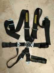 Schroth Harnesses taken from Fisher Fury